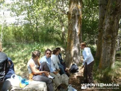 Barranco de Borbocid - Senderismo en Guadalajara; excursion cerca de madrid